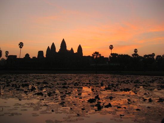 Buffalo Tours: Angkor Wat Temple Sunrise Dec 09