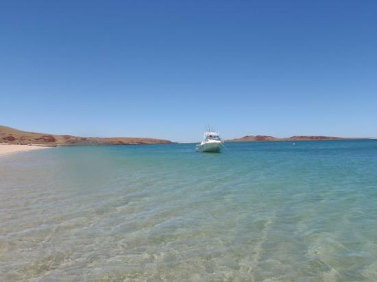 Karratha Australia  city photos gallery : Karratha, Australia: Youngala West Lewis Island, we didn't see another ...