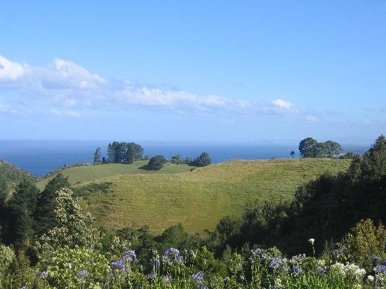 Poets Corner Lodge: View from the deck