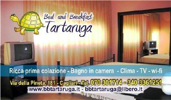 B & B La Tartaruga: presentazione