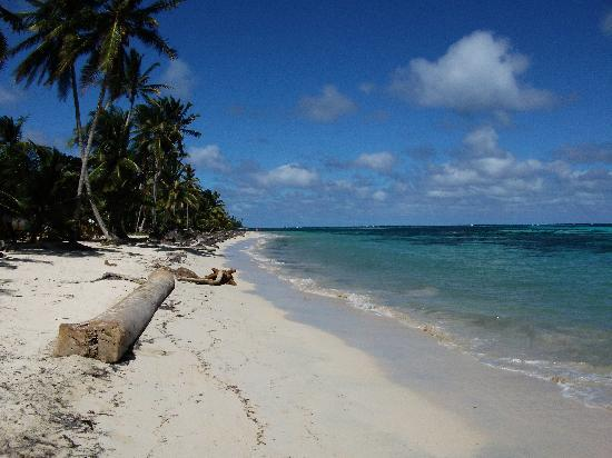 Little Corn Island, Nicaragua: Turn left at this leaning palm