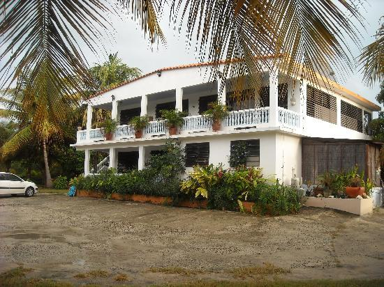 Mimi's Guest House: Mimi's guesthouse
