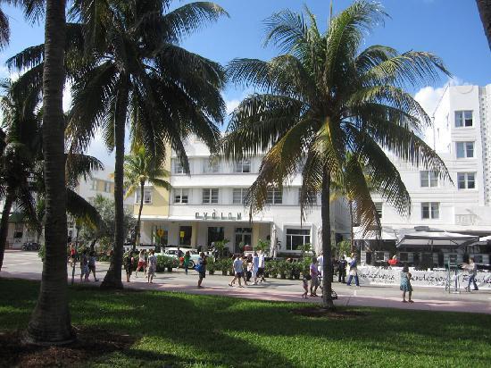 Avalon Hotel Miami Beach Fl