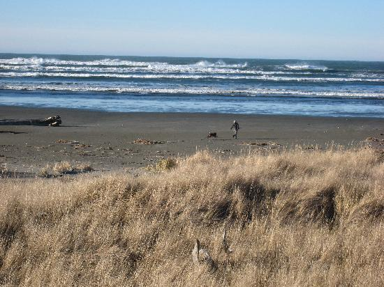 Moclips, WA: I took one dog to the beach in the morning and hubby snapped this from the room
