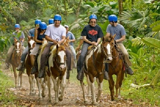 Arenal Volcano riding tour: Best Arenal Horses
