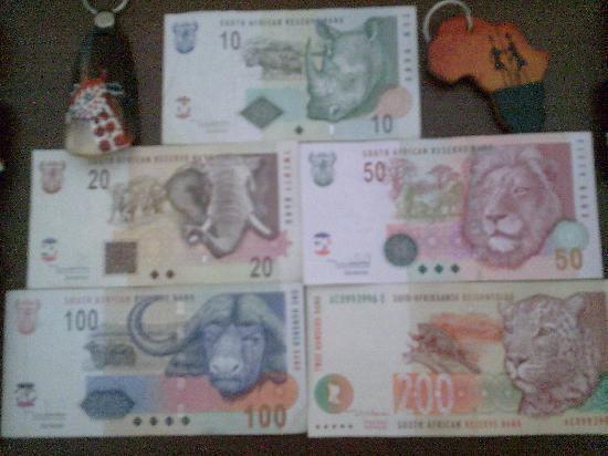 South Africa: Los Big Five en la Moneda de Sudáfrica