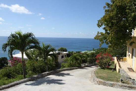 Villa Marbella Suites: Driveway