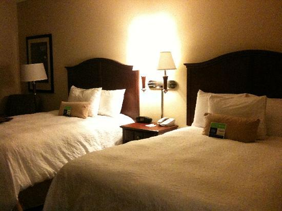 Hampton Inn & Suites Indianapolis-Airport : Beds