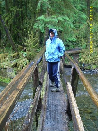 Quinault, วอชิงตัน: That bridge scared me, it was all shaky and crooked.  Look at it, it's just a log cut in half wi