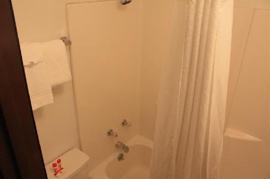 Super 8 Cortez/Mesa Verde Area: bagno