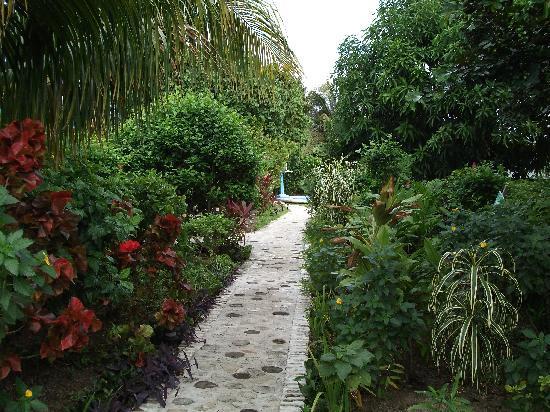 Amigos Hostel Cozumel: Stone Walkway