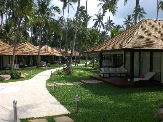 Nikki Beach Resort & Spa: vue sur les bungalows