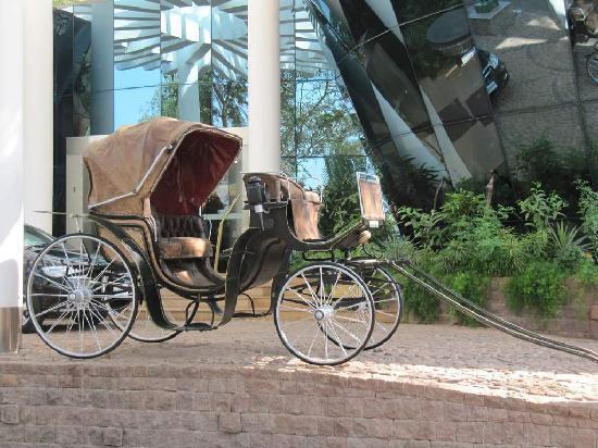 Prakruti Resort: 10