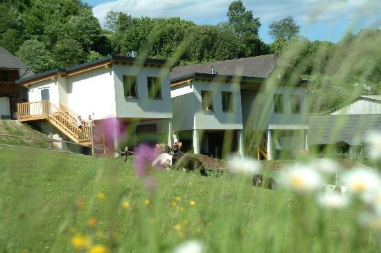 Romantik Lodge am Wanderreiterhof Kern: Die Lodges mit Blick ins Grüne