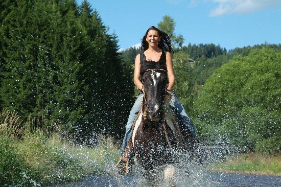 Wanderreithof Kern: Etwas Abkühlung im Sommer für Pferd&Reiter