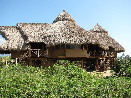 Playa Viva: Rooms