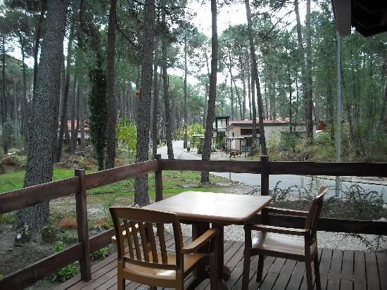 Paraiso Del Tietar: Porche del bungalow