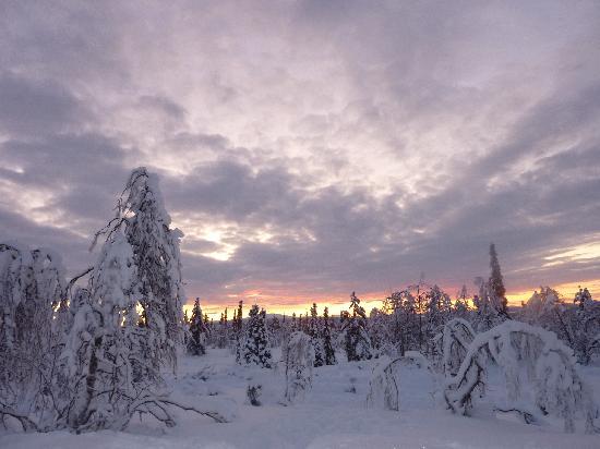 Lapland Hotel Pallas: sunrise