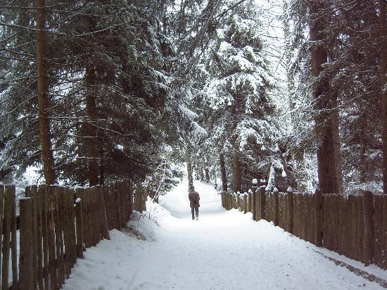 Hotel Mondschein: bella nevicata
