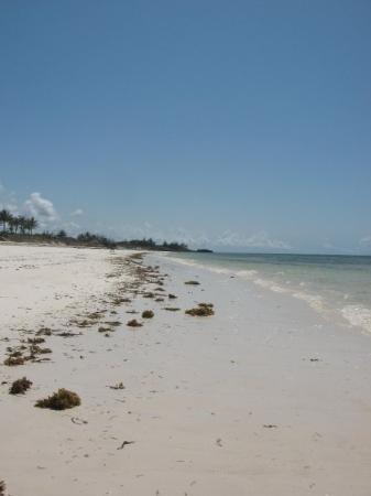 Bofa Beach - Kilifi