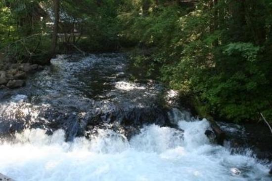 Prospect, OR: Rough River Gorge