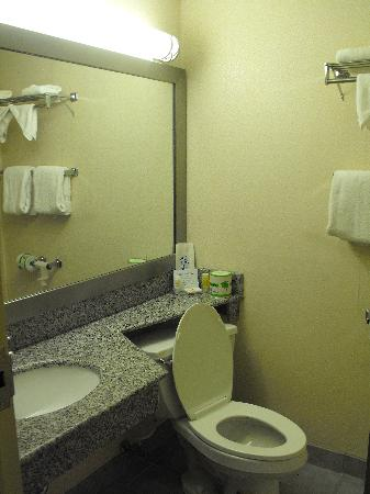 Quality Inn Enola - Harrisburg: Clean Bathroom - Quality Inn Enola PA