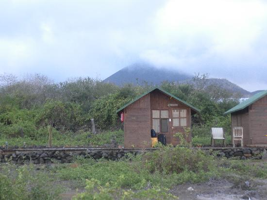 Floreana Lava Lodge: My lodge form the oceanside - the HIghlands behind the lodge