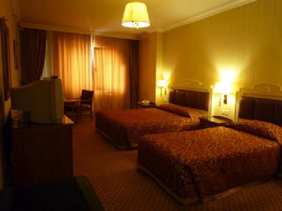 タクシム メトロパーク ホテル