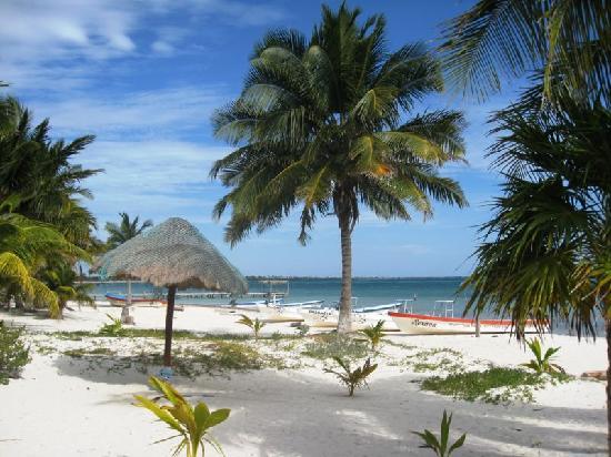 Punta Allen, México: Beach in front of Serenidad Shardon