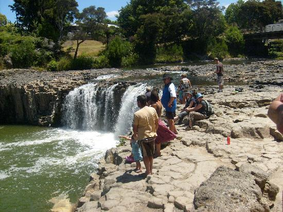 Twin Pines Tourist Park: fun at haruru falls