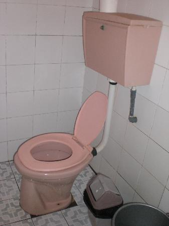 Pondok Lita: icky toilet and toilet seat not attached