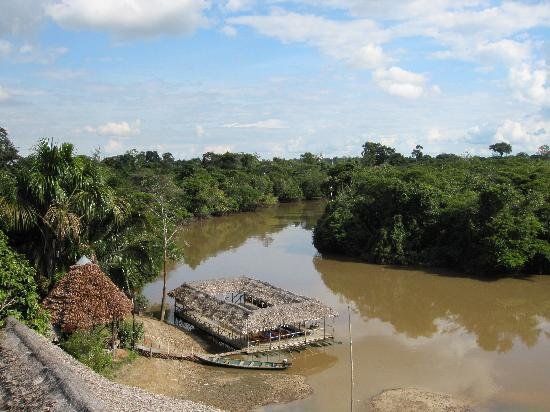 Amazon Rainforest Lodge: View from tower