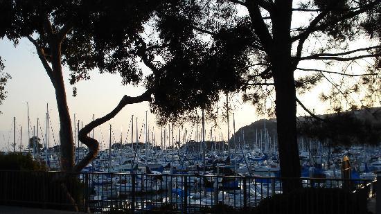 Dana Point Marina Inn: Marina