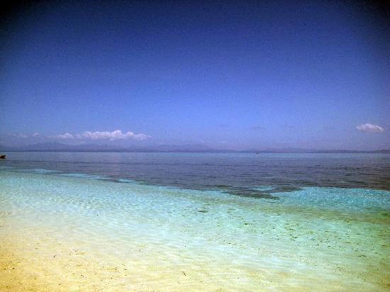 Malapascua Exotic Island Dive & Beach Resort: malapascua