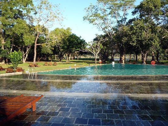 Habarana Village by Cinnamon: piscine