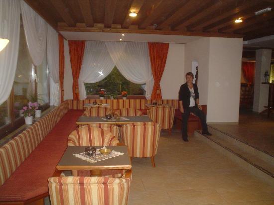 Hotel Mozart: salon