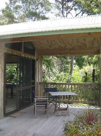 Bay of Islands Cottages: the decking within the trees