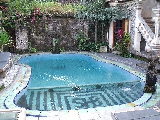 Sania's House Bungalows: the little swimmingpool
