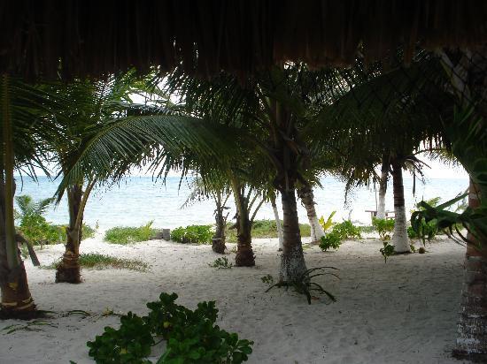 Bungalos Costa del Sol : View from Costa del Sol Bungalow ..' nuff said