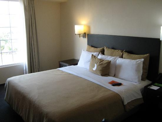 Ciudad Obregon, Mexico: La habitación cama