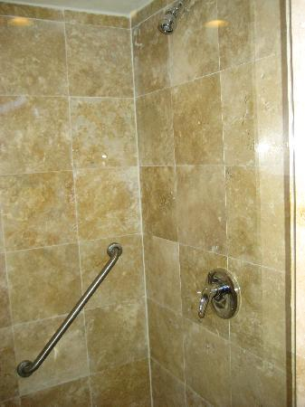 Fiesta Inn Ciudad Obregon : El baño 3