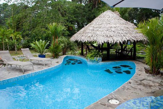 Hotel Banana Azul: The Pool