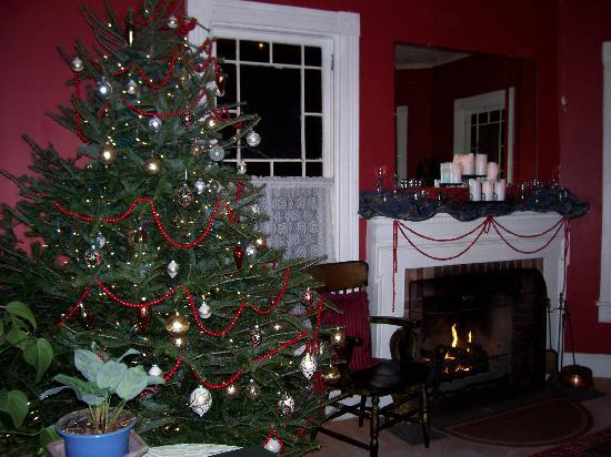 River Run Bed & Breakfast : perfectly decorated live Christmas tree