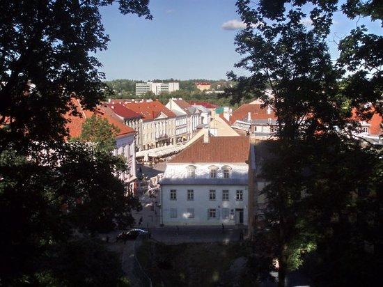 Foto de Tartu