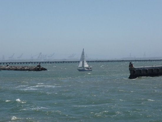 伯克利海湾