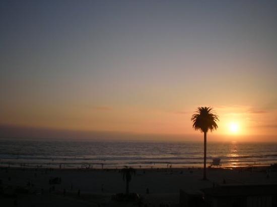 Encinitas, CA: Moonlight beach ( Saaaaknar!!! )