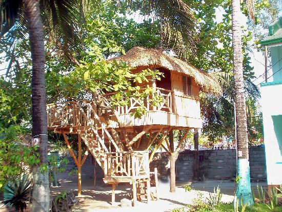 Bakasyunan and Conference Center: Native Treehouse