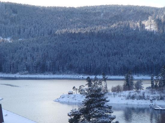 Aparthotel Sunside : veiw to the lake
