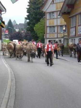 Appenzell Photo