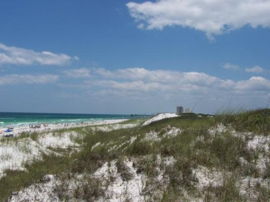 Beach at Panama City: Saturday morning, we drove to the east end of spit of land there, to St. Andrew's State Park.  T